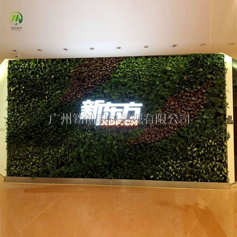 新东方仿真植物墙