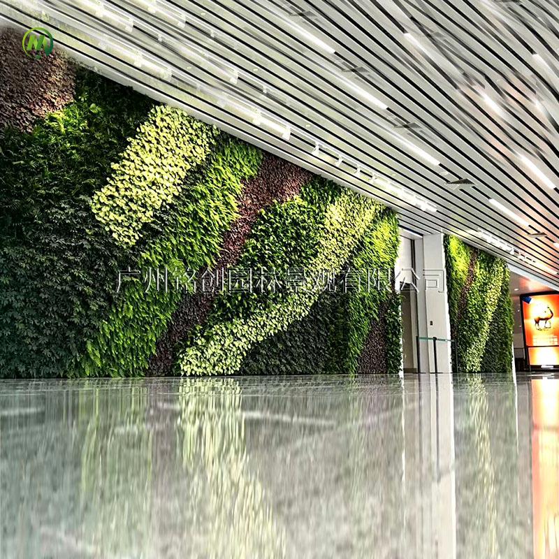 碧桂园销售中心植物墙