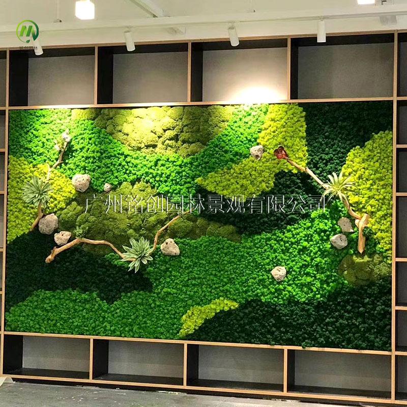 苔藓植物墙