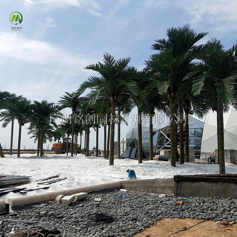 黄河明珠仿真椰子树