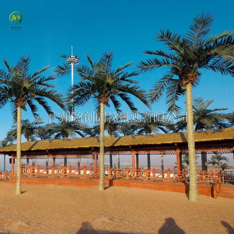 莆田黄金沙滩仿真椰子树